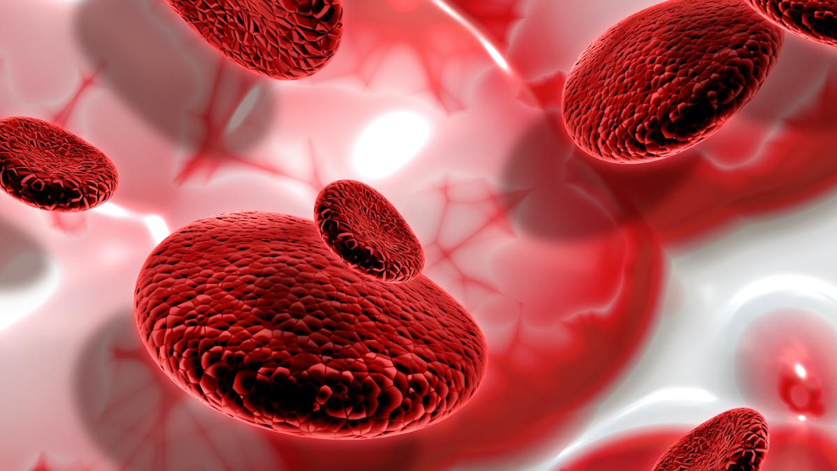 Влияние компонентов крови на точность измерения глюкозы